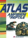Mic atlas. Amfibieni si reptile/Aurora Mihail, Dumitru Murariu, ALL Educational