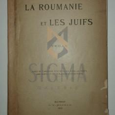 VERAX ( pseudonim Radu Rosetti ) - LA ROUMANIE ET LE JUIFS , BUCAREST, 1903