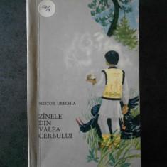 NESTOR URECHIA - ZANELE DIN VALEA CERBULUI (1966)