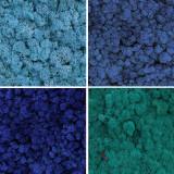 Licheni conservati ARTFLORA Mix Box Ocean Blue 500gr