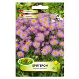 Cumpara ieftin Seminte flori, Florian, Erigeron - Batranis, 0,5 g