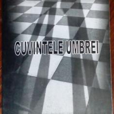 FLORIN MIHAILESCU-CUVINTELE UMBREI:IMAGINEA FILMULUI DE CE TRAG CLOPOTELE MITICA
