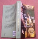 Treptele iubirii - Nora Roberts