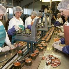 Fabrica de conserve olanda