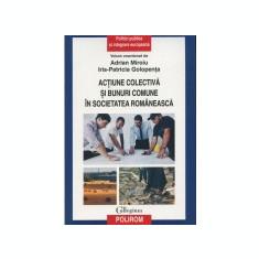 Collegium -Actiune colectiva si bunuri comune in societatea romaneasca