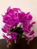 Orhidee siclam din silicon