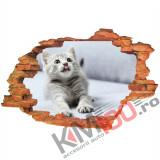 "Sticker ""Wall Crack"" Cat 5 - 120 x 80 cm"