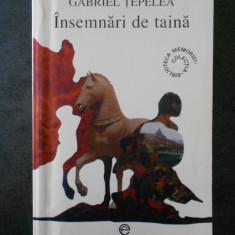 GABRIEL TEPELEA - INSEMNARI DE TAINA