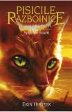Pisicile Razboinice vol.12: Apus de soare