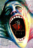 Pink Floyd The Wall (dvd)