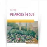 Pe Arges in sus - Ion Pillat, Hoffman