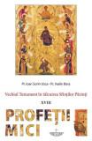 Cumpara ieftin Profeții mici. Vechiul Testament în tâlcuirea Sfinților Părinți
