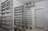 Fabrica Procesare carne