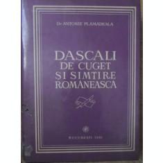 DASCALI DE CUGET SI SIMTIRE ROMANEASCA-ANTONIE PLAMADEALA