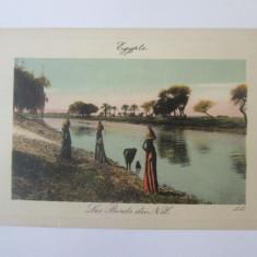 Carte postala necirculata Egipt-Pe malurile Nilului circa 1900