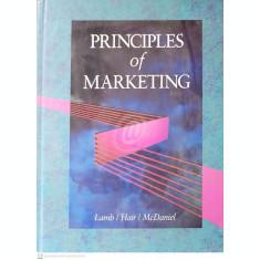 Principles of marketing (Lamb)