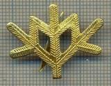 Y 1804 INSIGNA - MILITARA -SEMN DE ARMA -VANATORI DE MUNTE  -PENTRU COLECTIONARI