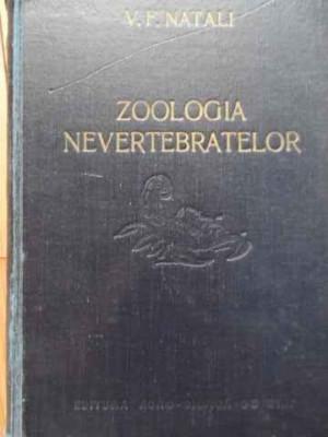 Zoologia Nevertebratelor - V. F. Natali ,520984 foto