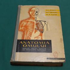 ANATOMIA OMULUI *MANUAL PENTRU ȘCOLILE DE ASISTENTE MEDICALE/ 1961