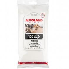 Servetele curatare interior auto Autoland