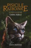 Pisicile Razboinice Vol.17: Umbre adanci, Erin Hunter