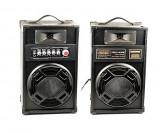 Boxe audio active Temeisheng DP 2307