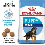 Royal Canin Maxi Puppy, hrană uscată câini junior, 4kg