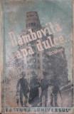 DAMBOVITA APA DULCE - DAMIAN STANOIU