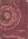 Cumpara ieftin Impletituri cu andrele - Elisabeta Iosivoni ((ed. Tehnica, 1965)