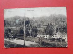 Carte postala veche CRAIOVA Parcul Bibescu ×  an 1914 Timbru deslipit foto