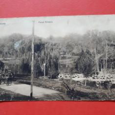 Carte postala veche CRAIOVA Parcul Bibescu ×  an 1914 Timbru deslipit, Circulata, Printata