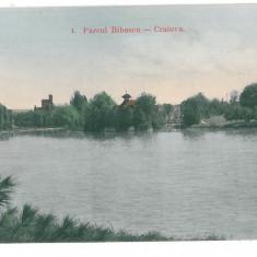 4559 - CRAIOVA, Bibescu Park, Romania - old postcard - unused, Necirculata, Printata