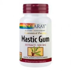 Mastic Gum 500mg, 45cps, Solaray