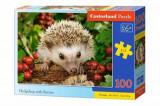 Cumpara ieftin Puzzle Hedgehog with Berries, 100 piese