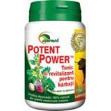 Potent Power Star International 50tb Cod: 3441