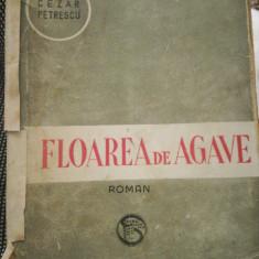 Floarea de agave. Satyricon, Cezar Petrescu, roman, Socec