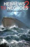 Hebrews to Negroes 2 Volume 3: Wake Up Black America