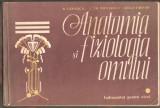 Anatomia si fiziologia omului-R.Carmaciu