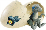 Jucarie Jurassic World Hatch Velociraptor Blue