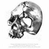 Inel Craniu in ruina (Q-Z1)