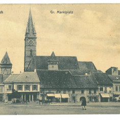 4613 - MEDIAS, Sibiu, Market, Romania - old postcard - unused
