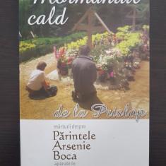 MORMANTUL CALD DE LA PRISLOP. MARTURII DESPRE PARINTELE ARSENIE BOCA