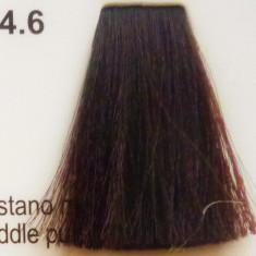Vopsea de par CLR fara amoniac - nr. 4. 6- 100 ml, Parisienne