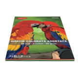 Hartie Colorata Asortata DACO A4, 80 g/m², 50 Coli/Top, 5 Culori, Top Hartie Colorata, Coli Colorate, Hartie Color A4, Hartie Colorata, Foi de Hartie