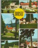 CPIB 15207 - CARTE POSTALA - BORSEC, MOZAIC