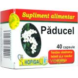 Paducel 40cps