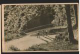 CPIB 15521 CARTE POSTALA - DRUM SPRE POIANA STALIN (POIANA BRASOV), RPR, 1955