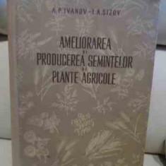 Ameliorarea Si Producerea Semintelor De Plante Agricole - Colectiv ,537386