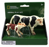 Set 2 figurine - Taur si vitel, National Geographic