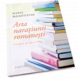 Arta naratiunii romanesti   Maria Sleahtitchi, Cartier